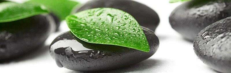 leaf stone drops