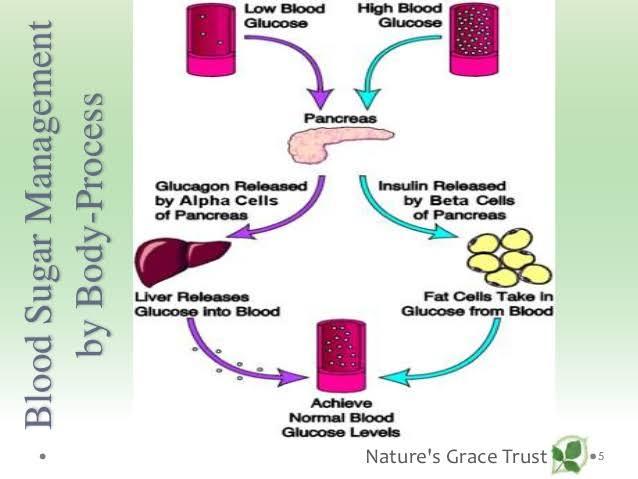 disease process