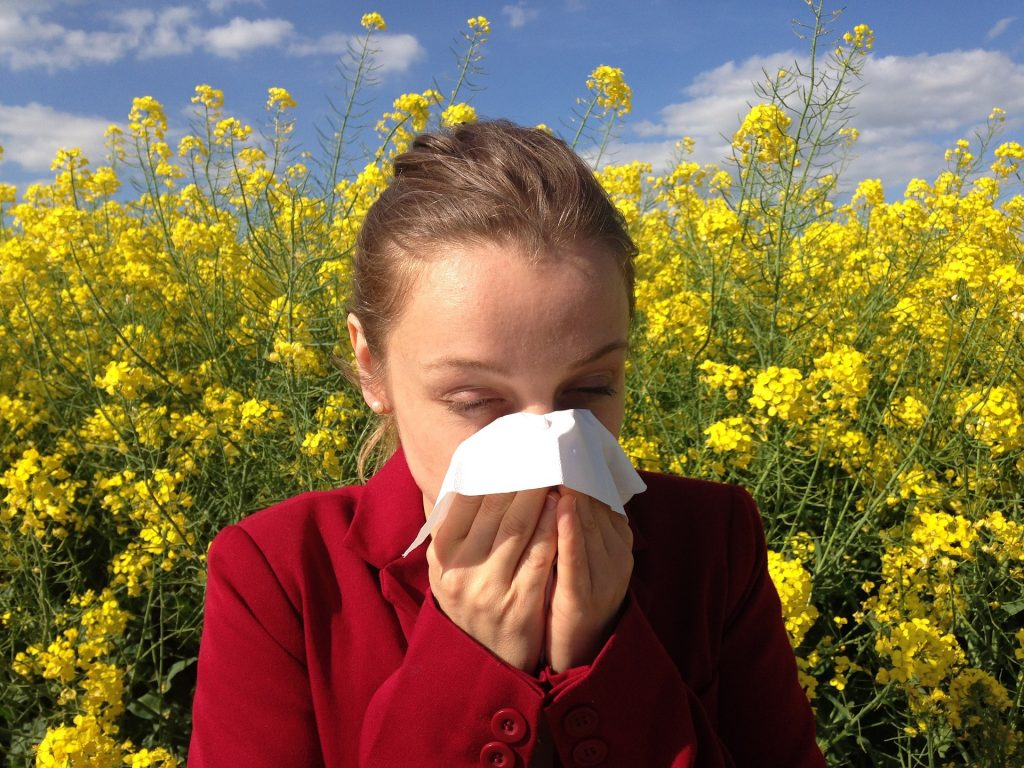 allergies image