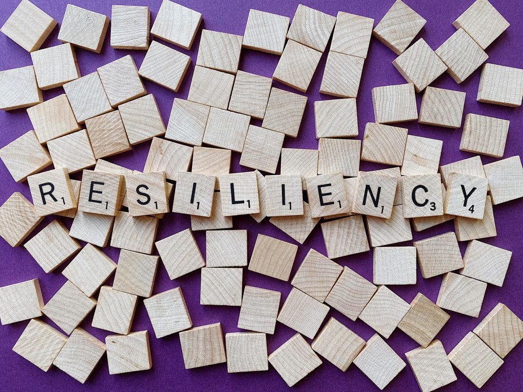 resilience image
