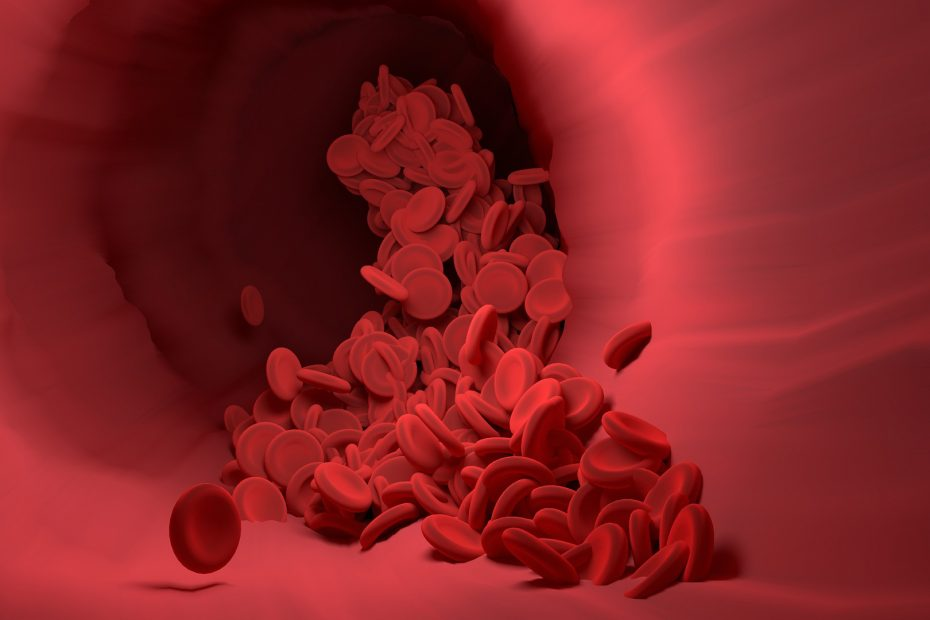 red blood cells image